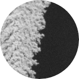 coating of nanoparticles forms branch-shape effective plamonic antena SEM image