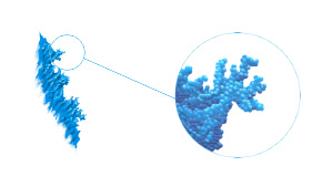 coating of nanoparticles forms branch-shape effective plamonic antena